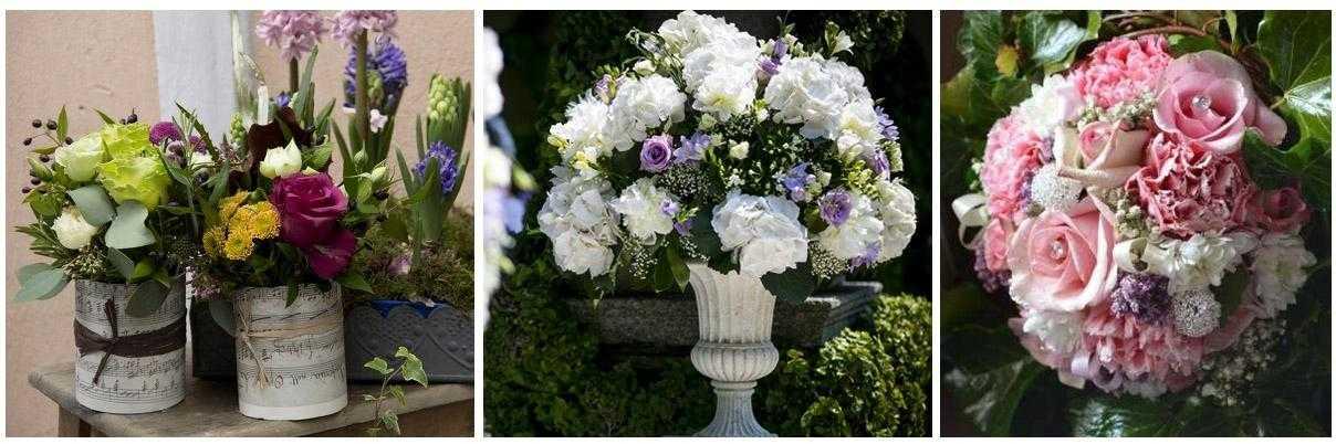 Cheap casa del fiore negozio fiori e piante zola predosa for Planimetrie della casa del negozio