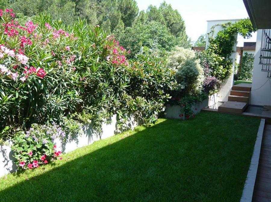 Terrazzi pensili Bologna - I Giardini Di Anna